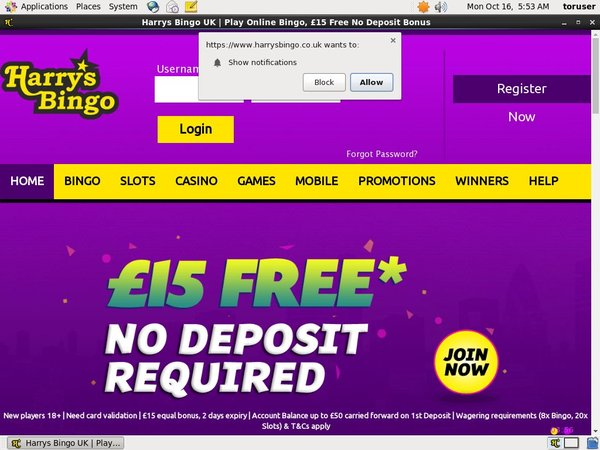 Harrys Bingo Opening Offer