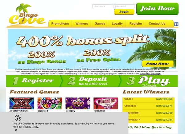 Bingo Cove Free Casino Games