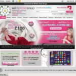Free White Rose Bingo Bet
