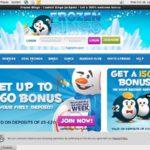 Frozen Bingo Bonus