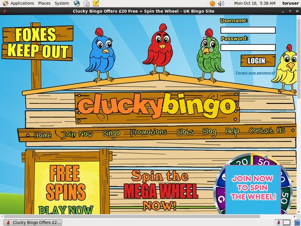 Clucky Bingo Table Limits