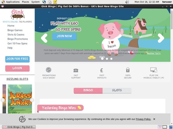 Oinkbingo Live Streaming